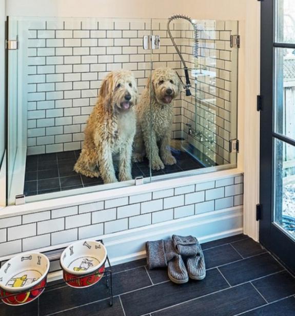 Pet-Friendly Home Design