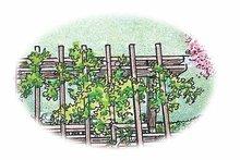 Exterior - Rear Elevation Plan #1040-143