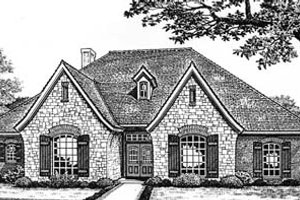 European Exterior - Front Elevation Plan #310-529
