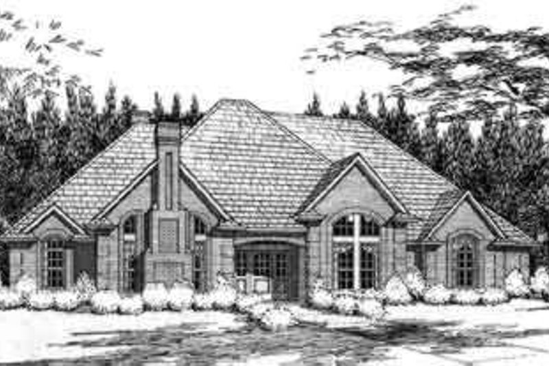 Dream House Plan - Traditional Exterior - Front Elevation Plan #120-116