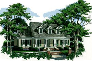 Country Exterior - Front Elevation Plan #45-147