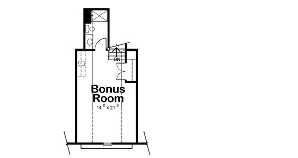 Optional Bonus Level