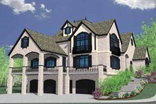 Country Exterior - Rear Elevation Plan #509-398