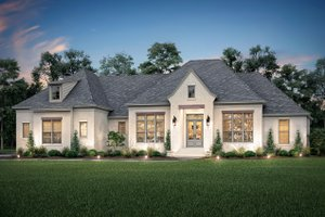 Dream House Plan - Farmhouse Exterior - Front Elevation Plan #430-202