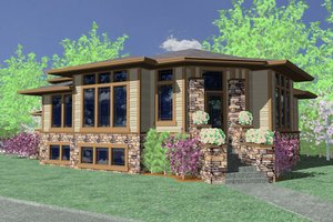 Modern Exterior - Front Elevation Plan #509-1