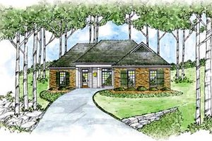 Traditional Exterior - Front Elevation Plan #36-130