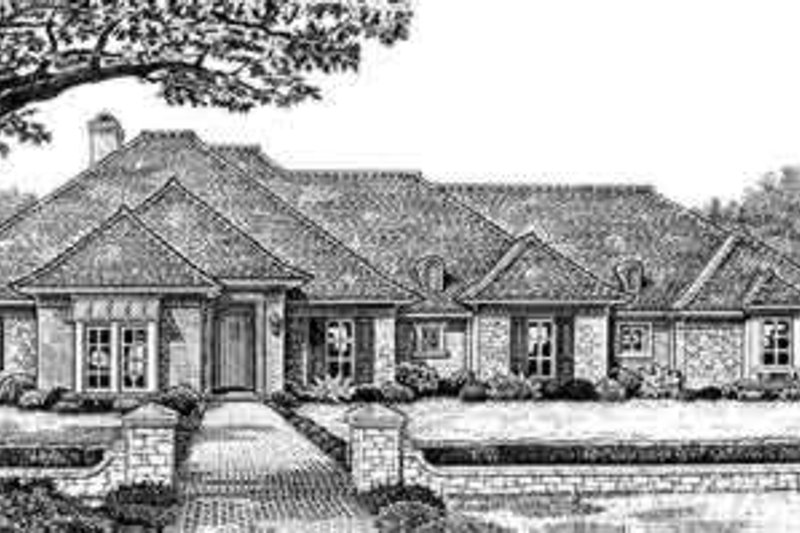 Dream House Plan - European Exterior - Front Elevation Plan #310-249