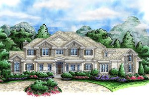 Country Exterior - Front Elevation Plan #27-531