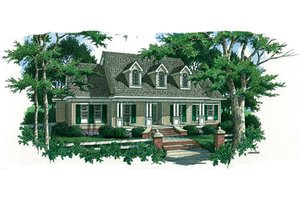Country Exterior - Front Elevation Plan #45-353
