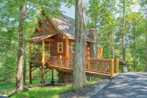 Cabin Exterior - Front Elevation Plan #123-115